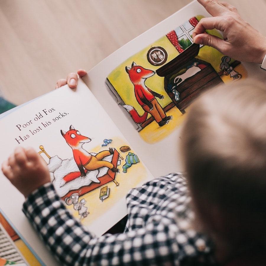 О том как рассматривать картинки в книгах с пользой для детей в интернет-магазине Фантазеры.рф