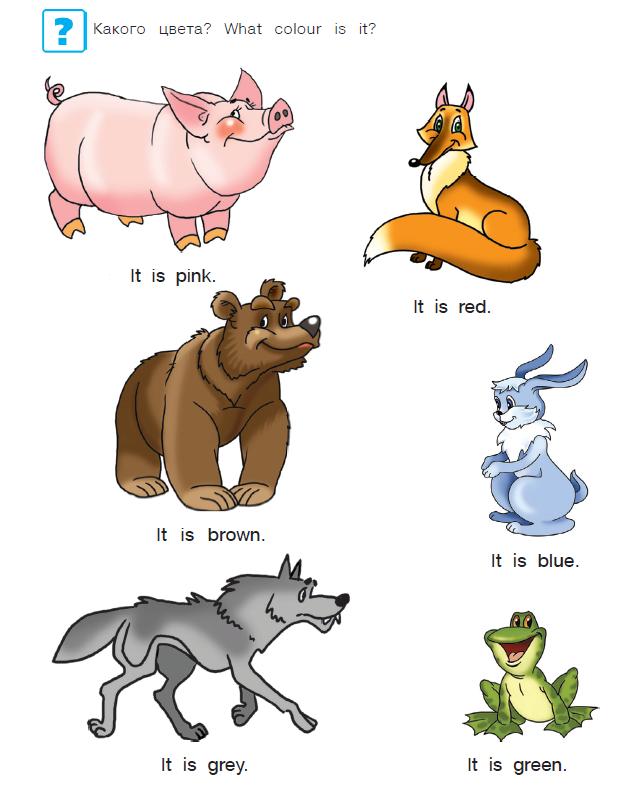 учим английский с нуля в картинках видам
